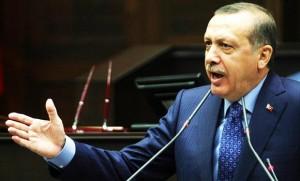 erdogan 050713