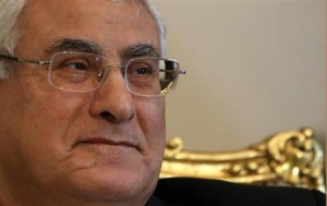 Egypt's interim President Adli Mansour attends a meeting with U.S. Deputy Secretary of State William Burns at El-Thadiya presidential palace in Cairo