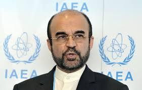 Ambassador Reza Najafi