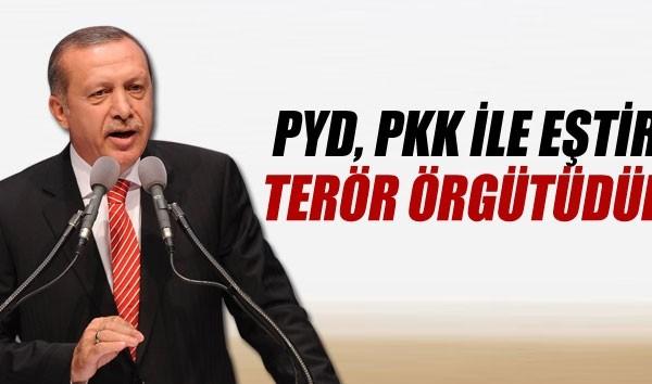 Poster  of Turkish president Erdogan reads  : Both PYD and PKK are terror orgnaizations