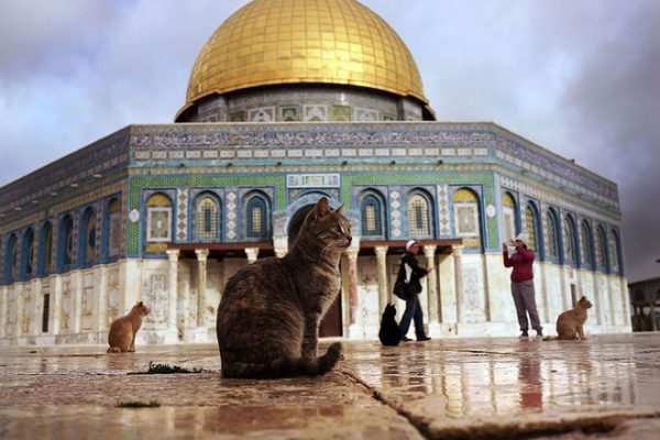UNESCO expected to adopt controversial Jerusalem resolution