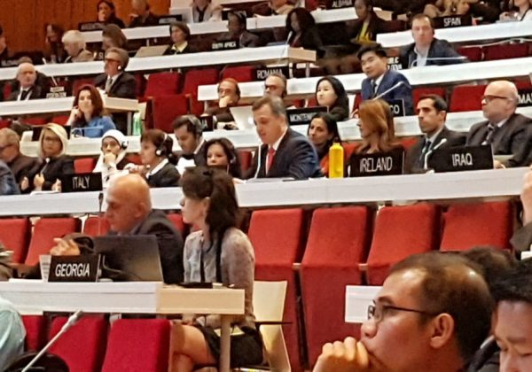 UNESCO members vote in a resolution that labels Israel 'occupying power' in Jerusalem 4, 2017/. (photo credit:Courtesy)