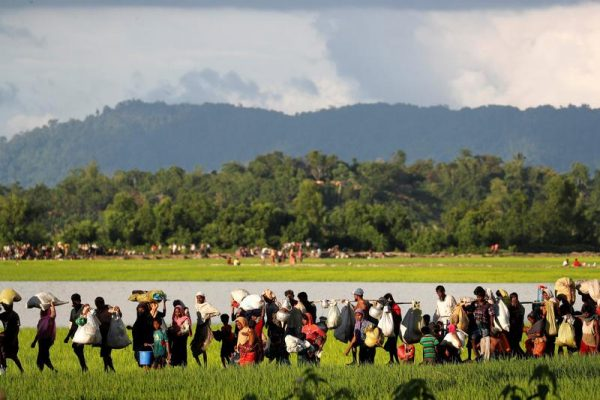 I can't take this any more' .Rohingya refugees, who arrived from Myanmar last night, walk in a rice field after crossing the border in Palang Khali near Cox's Bazaar, Bangladesh October 9, 2017. REUTERS/Jorge Silva