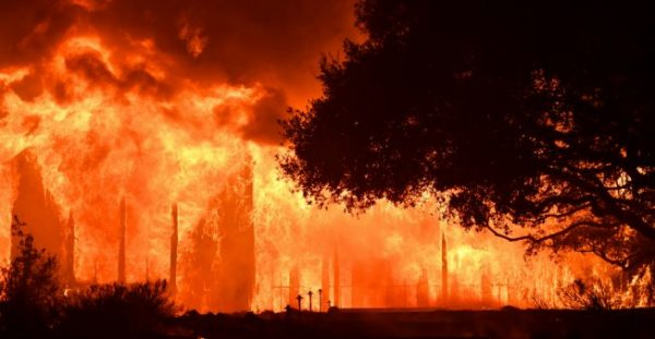california wildfires NAPA