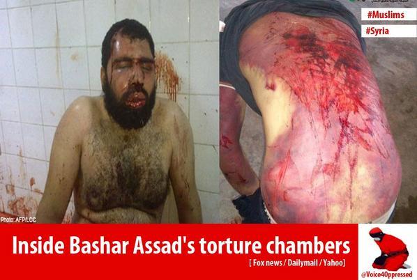 assad torture chamber